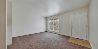 Living Room and Front Door